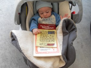 reviewing the haggadah